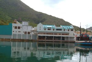 Hout Bay Fish Factory06